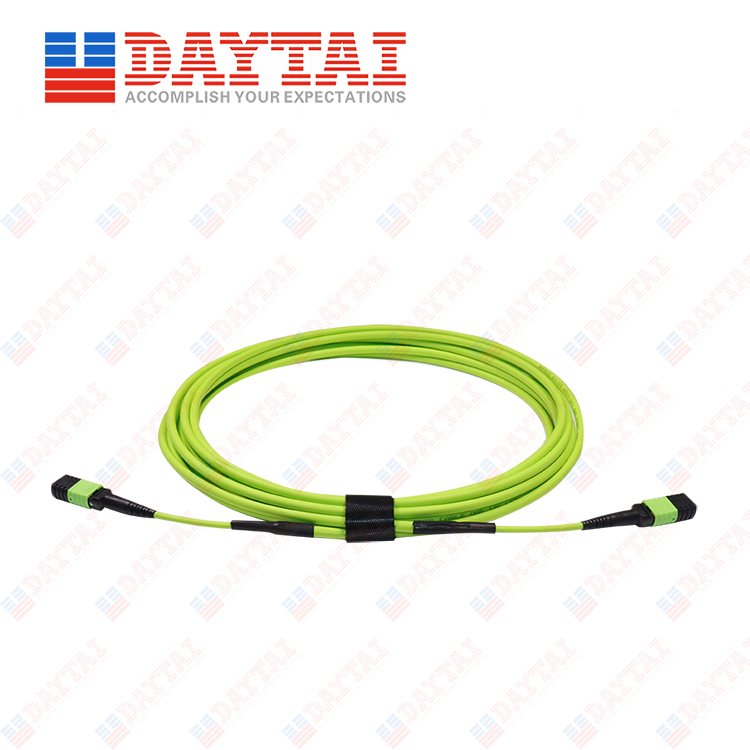 12Core MM OM5 Female to Female MPO Trunk Patch Cord